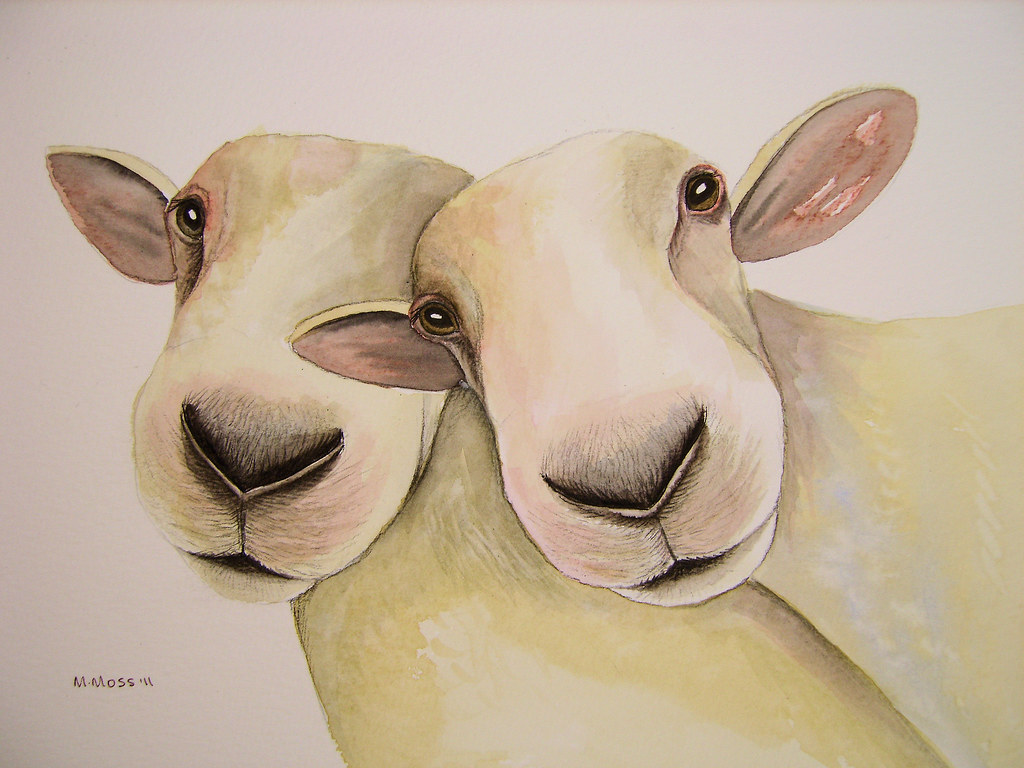 Sheep Watercolour Painting