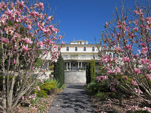 Spring - Carrington Hotel Katoomba