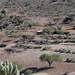 Campo con una corral y cacti; Los Reyes Metzontla, Puebla, Mexico por Lon&Queta