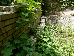 Abandoned Church of Christ Science: Broken Wall