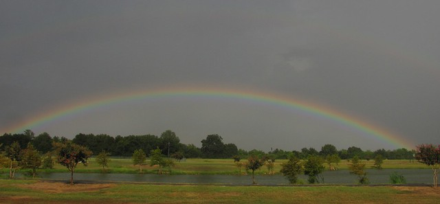 Arkansas Rainbow