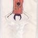 menina do caixote com um furo ovalado. by leonardo MAthias