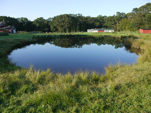 A full pond in August!