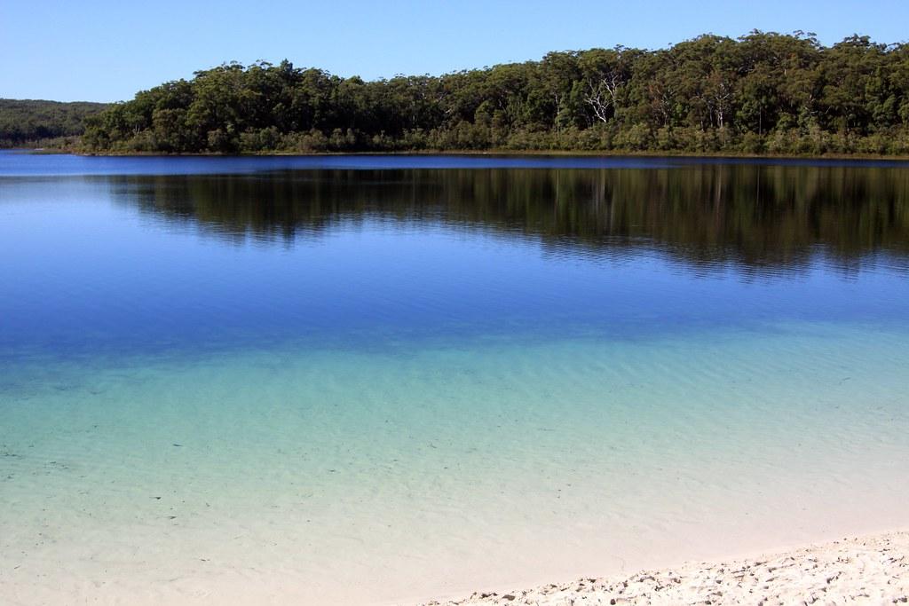 フレーザー島の画像 p1_21