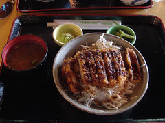 meal, tonkatsu, katsudon, meat, food, dish, cuisine,
