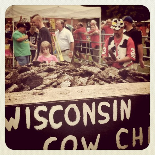 Choose your chips carefully at the Wisconsin State Cow Chip Throw!