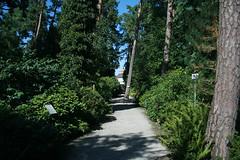 Rhododenronhain - Botanischer Garten München