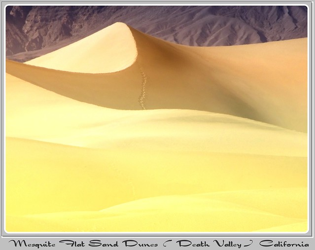 Mesquite Flat Sand Dunes (DEATH VALLEY)