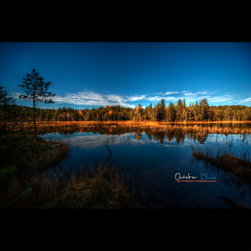 blue autumn sky lake forest reflections nikon frost sigma 1224mm sigma1224mmf4556 d700 nikond700 grunnvannet