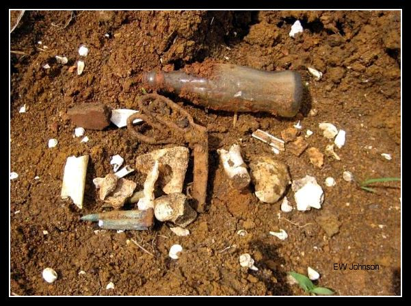 Bones, Bullets, and Artifacts