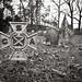 Confederate Grave, Aldie P1140603.jpg