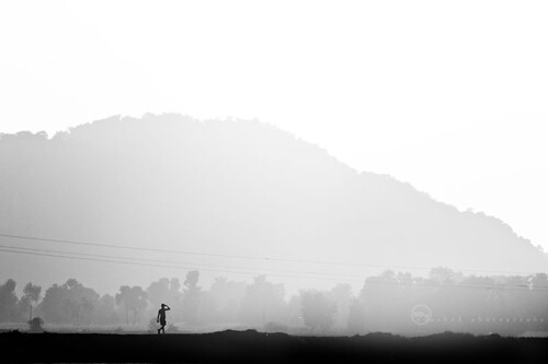 morning travel bw india man nature sunrise asian grey morninglight blackwhite nikon asia indian minimal dude desi gaya minimalistic bnw bharat kv bharath desh barat bihar barath nikkor70300 ayashok nikond300 aya6468
