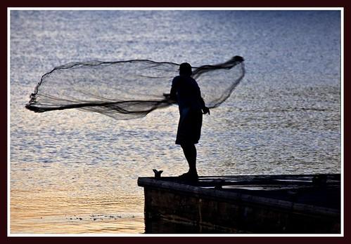 Net Casting at Dusk Clontarf Pelican Park-1=