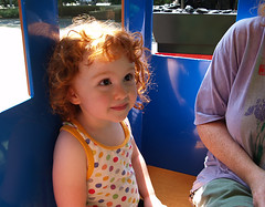 Speck on the Zoon train at 41 months
