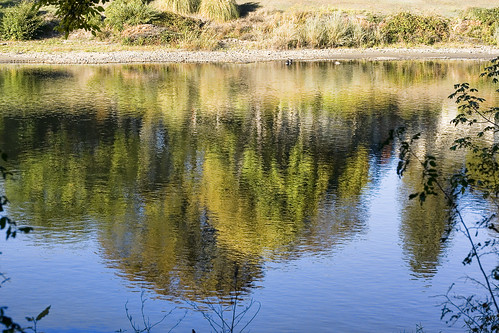 riversidepark rogueriver grantspass