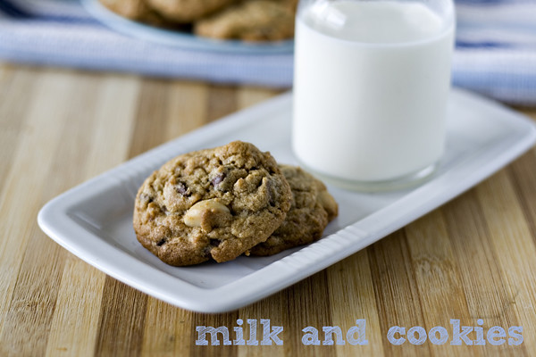 choc chip macadamia cookie 07