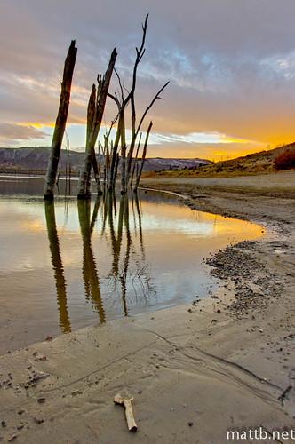 blue trees sunset sky color reflection beach clouds creek dead colorado driftwood elk hdr mesa gunnison
