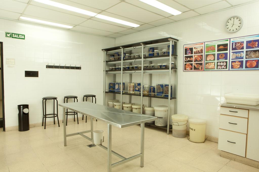Laboratorio Macro