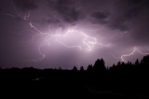 longexposure trees sky storm night landscape outdoor stormy lightening thunder lighteningstrike forklightening canoneos5dmarkii