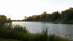 Morning in High Park