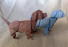 Paper Animal 3 Photos | Labradors | 600