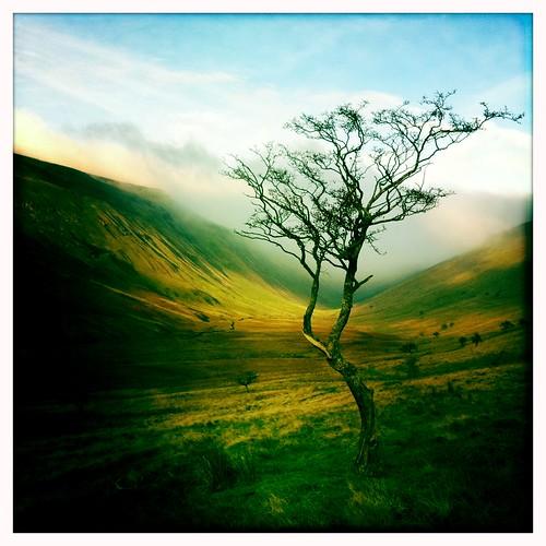 landscape cumbria iphone highcupgill johnslens iphoneography hipstamatic blankofilm
