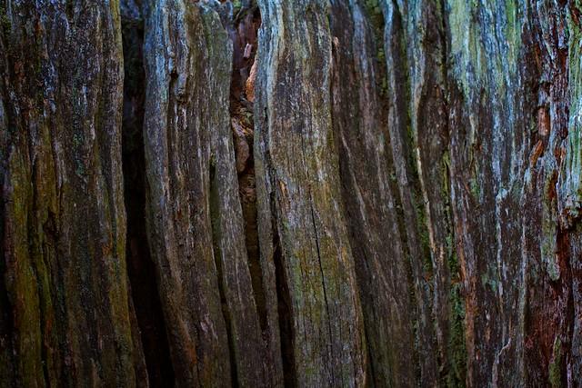 Nice wood.