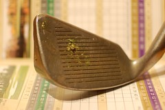 hand(0.0), guitar(0.0), golf club(1.0), golf equipment(1.0),