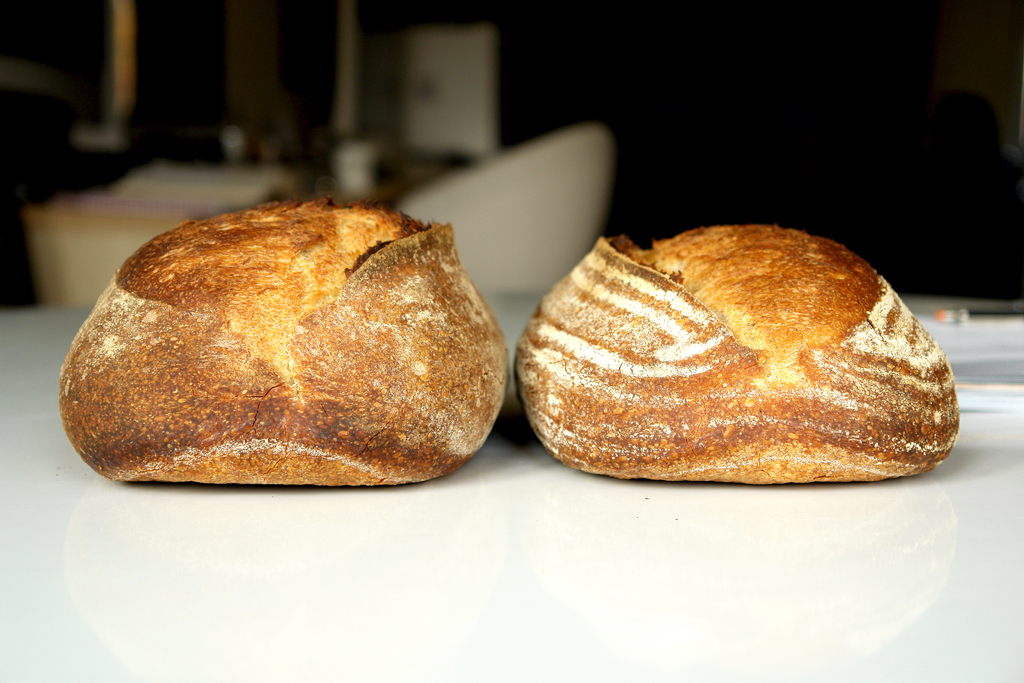 6376568615 7895d75e82 b San Francisco Sourdough with a twist (I)