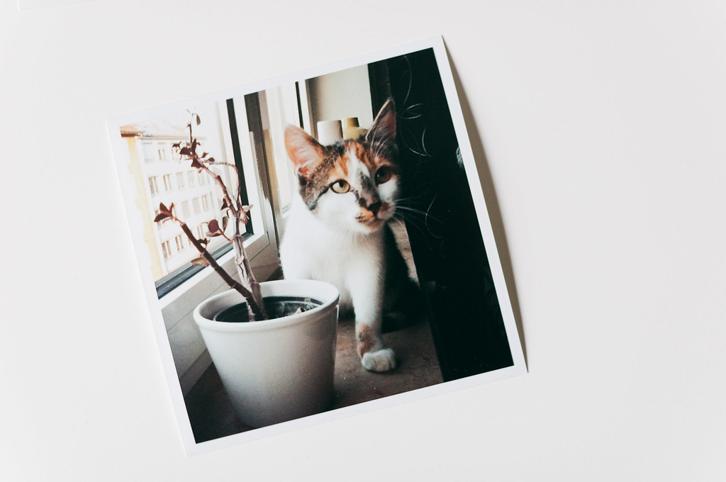 Instagram Photo Prints