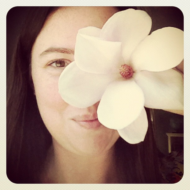 My magnolia tree blooms are as big as my face!