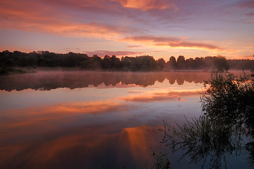 morning wild mist lake reflection nature water colors fog sunrise germany landscape deutschland mirror europe landschaft brandenburg dietrichbojko dietrichbojkophotographie