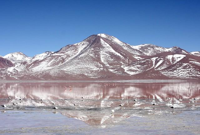 Laguna Colorada, Reserva Nacional de Fauna Andina Eduardo Avaroa, Altiplano, Bolivia