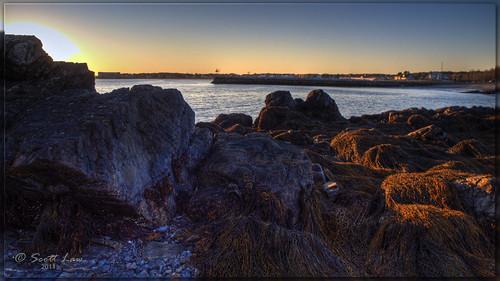 ocean sunset usa seaweed water rocks maine kennebunkport hdr