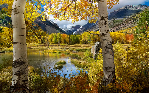 Autumn at Lundy Canyon