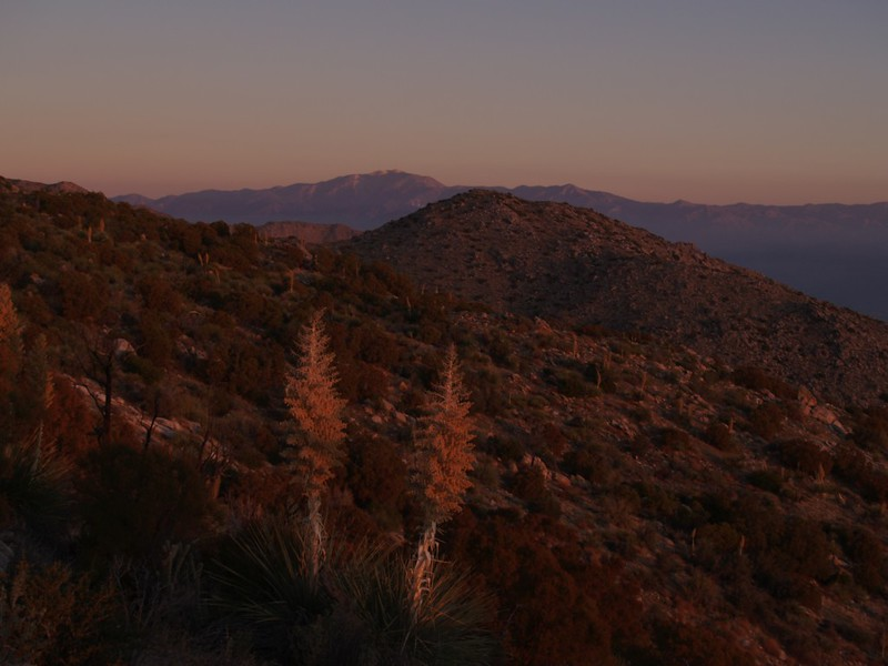 Skyline Trail 4500ft - Dawn Alpenglow on San Gorgonio Mountain