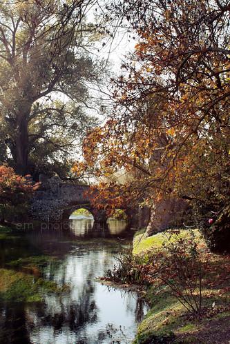 autumn reflection fall garden colours autunno ninfa