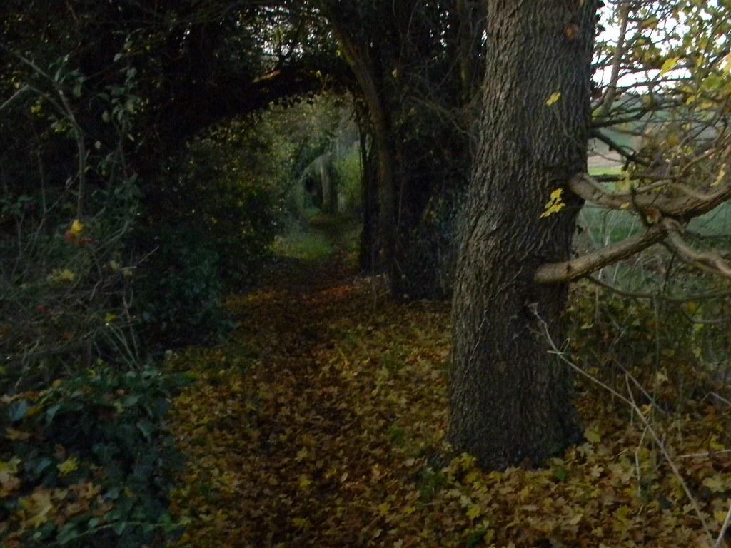 Gloomy bridleway New Addington to Hayes