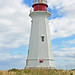 DGJ_4801 - Low Point Lighthouse by archer10 (Dennis) 138M Views