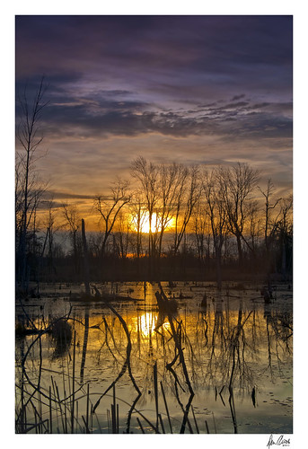 county reflection sunrise oakland nikon michigan wetlands addison township d90