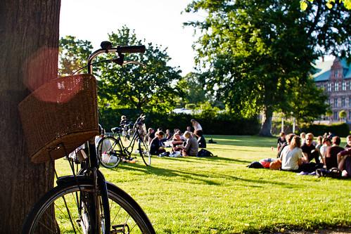 Bicicleta y el disfrute de las áreas verdes