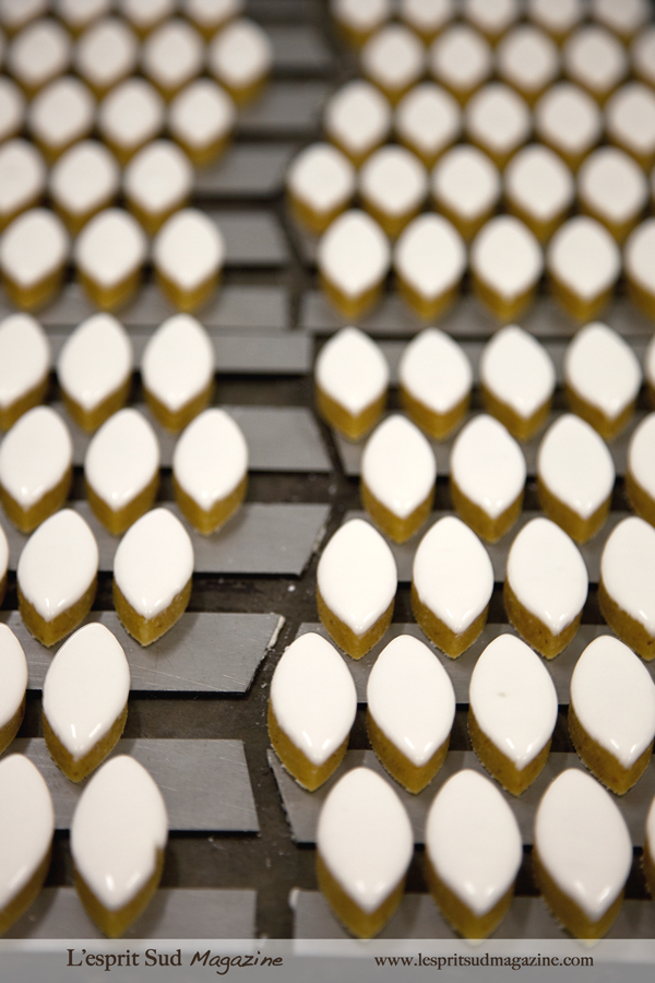 Calissons blancs - Puyricard chocolate workshop