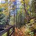 Série parc provincial La Vérendrye : sentier chutes Rolland .jpg