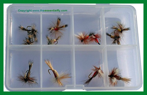 humpy_trout_fly_selection12_assorted_humpy_flies