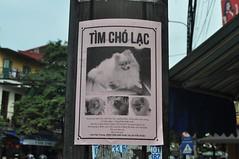 A Vietnam es menja carn de gos (poca), la majoria són mascotes