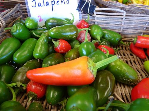 Peper 'Jalapeno'