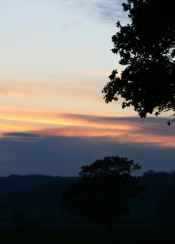 'autumn dusk' by http://flickr.com/photos/herefordcat