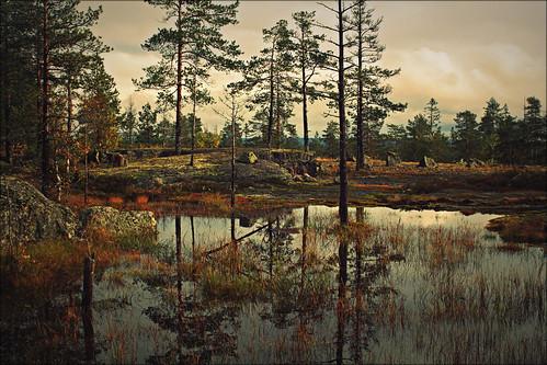 fagerliden by Jonas Fransson