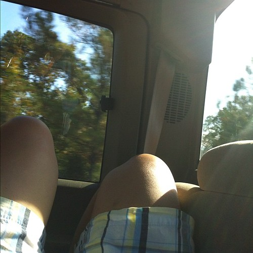 This isn't for the photograph, it's for the moment. Laying in the back seat on a sunny day as the trees go by. #nofilter