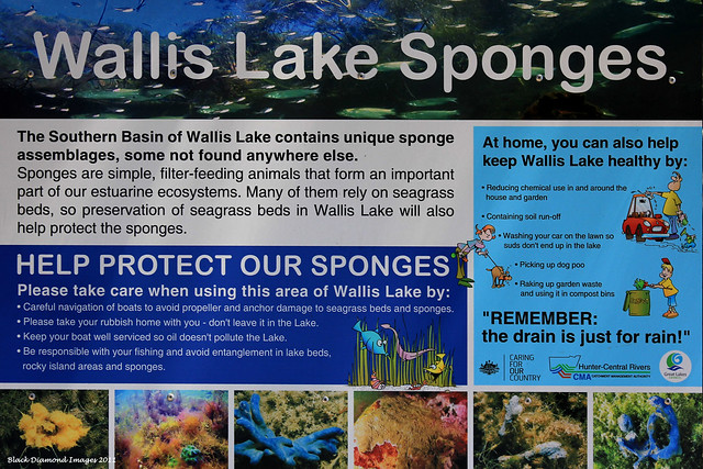 Wallis Lake Sponges Sign at Pacific Palms Recreation Club Wharf